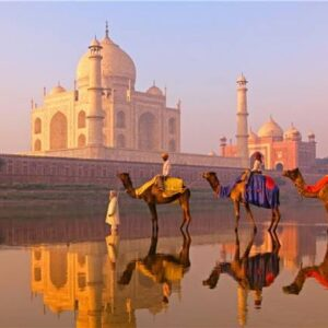 India Packages